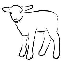Lamb silhouette isolated on white