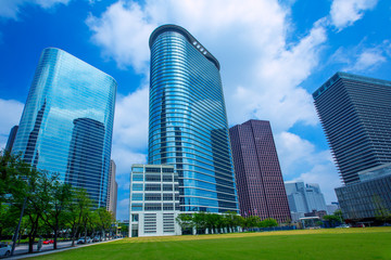 Wall Mural - Houston downtown skyscrapers disctict blue sky mirror