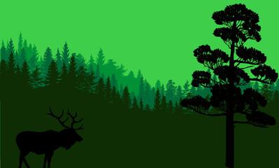 single deer silhouette in dark green forest