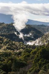 volcanoes in thermal valley in Rotorua