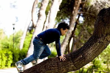 Bambino che sale sull'albero