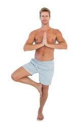 Man doing the tree pose