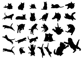 cat vector icon collection