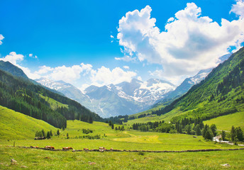 Wall Mural - Beautiful landscape with Alps, Nationalpark Hohe Tauern, Austria