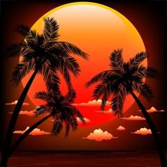 Sunset on Tropical Seascape-Tramonto Sul Mare dei Tropici