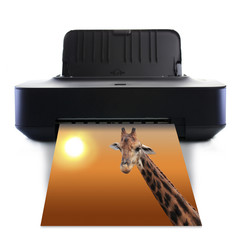 Printer and picture with Giraffe