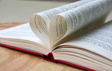 Liebe zum Lesen