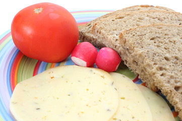 Slices of bread, tomato, cheese and radish on the plate