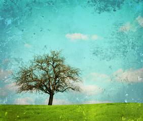 Vert corail Vintage image of landscape with oak tree
