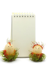 rambutan with white paper board