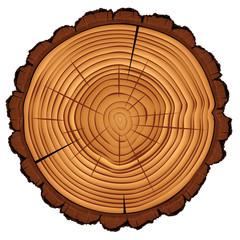 Cross section of tree stump, vector Eps10 illustration.