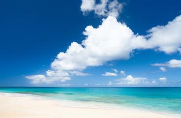 Photo sur Toile Plage Caribbean beach and sea