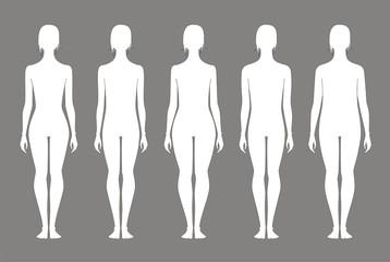 Vector illustration of women's figures. Different types