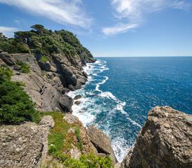 panoramica della costa del promontorio di Portofino