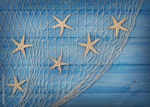 купить парижа на рыболовную сеть