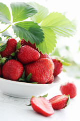 spring berry