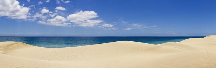 dunes and ocean Wall mural