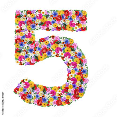 Цифра 5 из цветов