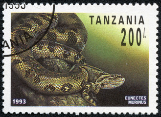 stamp printed in Tanzania shows eunectes murinus