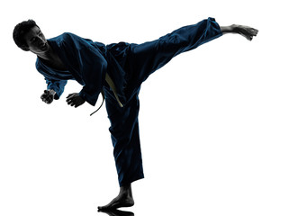 Foto op Aluminium Vechtsport karate vietvodao martial arts man silhouette