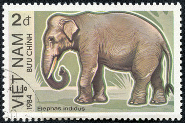 stamp printed in Vietnam displaying an elephant