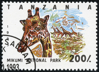 Stamp printed in Tanzania , shows giraffe