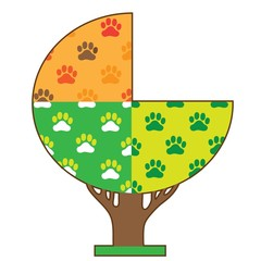 Dog Paw Seasons