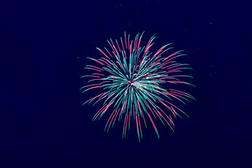 Colorful fireworks on the dark sky background