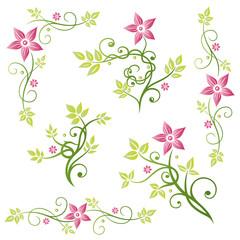Blumen, Blätter, Ranken, vector set bunt