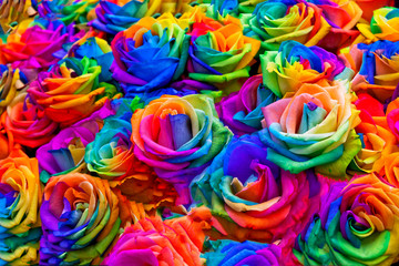 A bouquet of rainbow roses.
