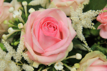 Pink roses and stephanotis in bridal bouquet