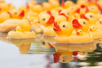 Plastic yellow duck toy