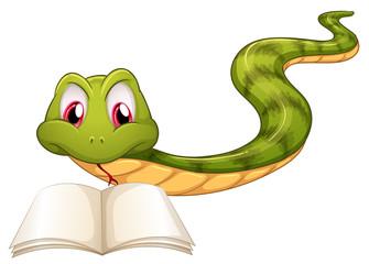 A snake reading