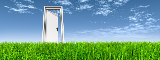 Conceptual door on grass over sky