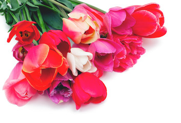 bunch of red and pink tulips over white