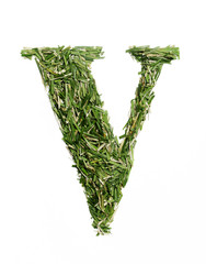 typographic letter with grass V