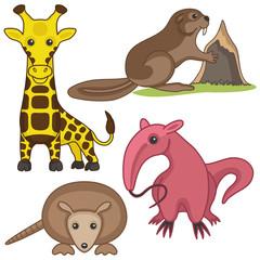 Animal set.