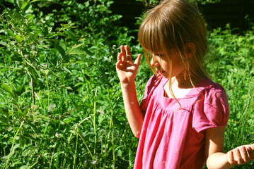 Girl playing with dandelion seeds in the summer garden