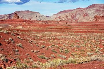 Wall Mural - Raw Utah Landscape