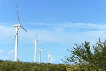 Poster South America Country Wind turbines on the Guajira Peninsula