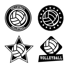 volleyball seals