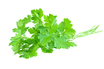 Bunch of fresh green parsley isolated on white