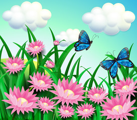 Butterflies at the garden with pink flowers