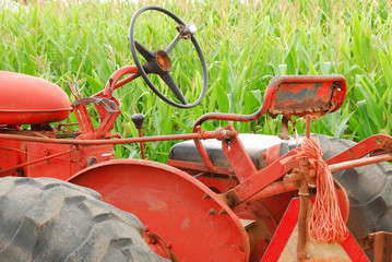Old Tractor and Corn