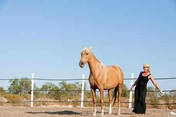 junge weibliche reiterin trainiert ihr pferd im freien im sommer