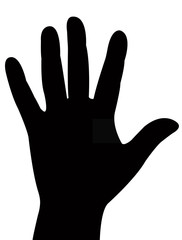 a lady hand, silhouette vector