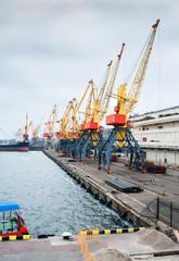 Odessa port cargo cranes