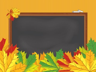 Chalkboard, maple leaves, back to school, vector eps 10