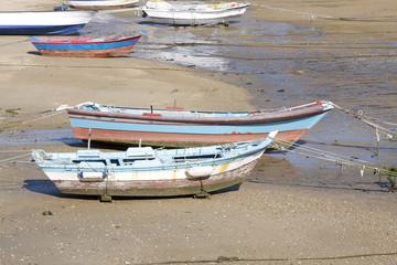 barcas de remos tradicionales