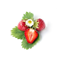 Strawberry with leaf  and floyers